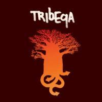 Tribeqa