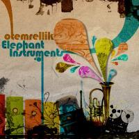 Elephant Instruments
